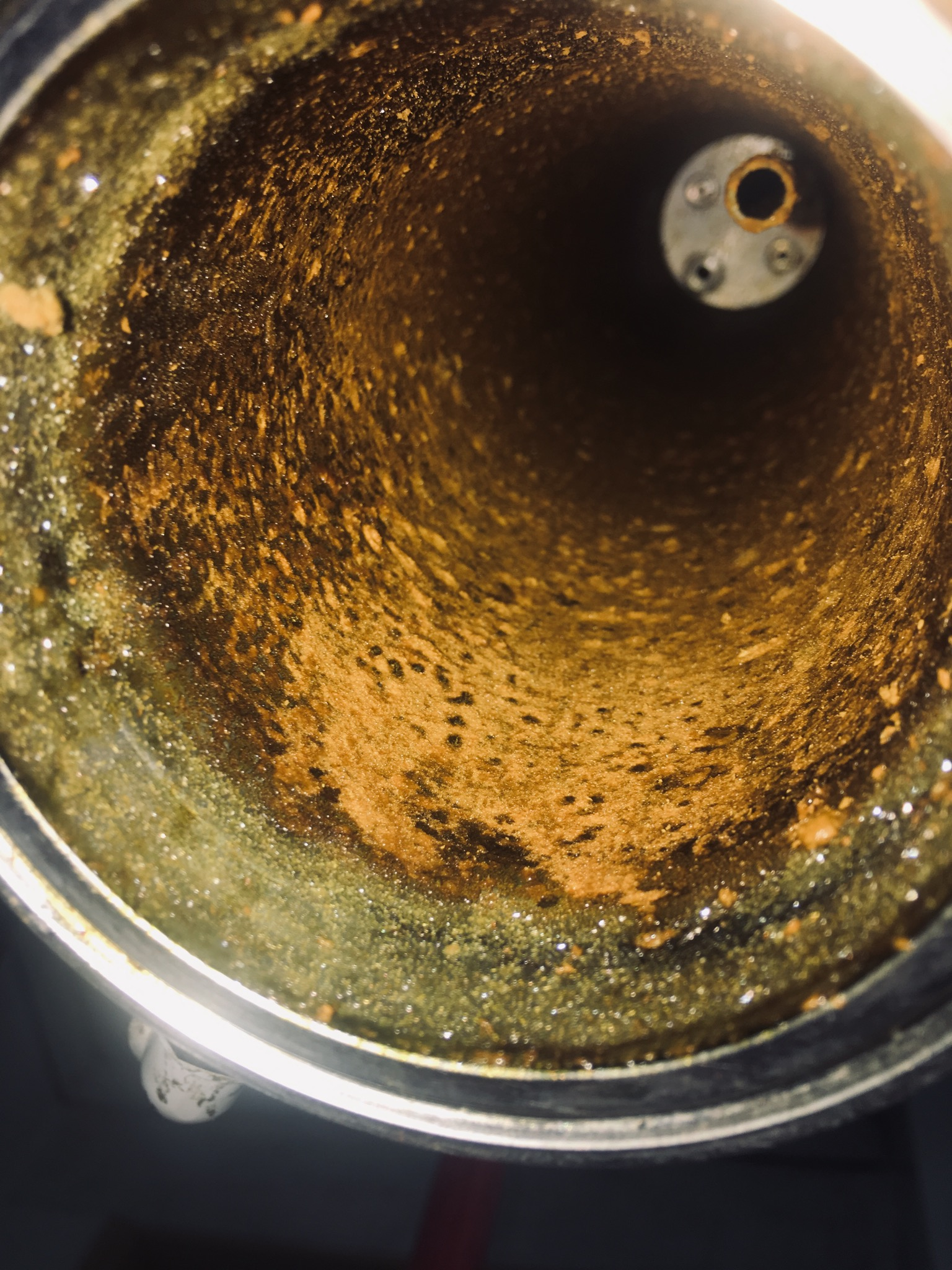 Decarbing co2 oil for vapes? - Extraction - Future4200