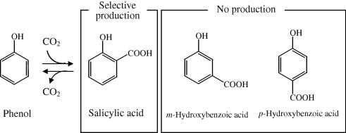 regioselectivityofcooh